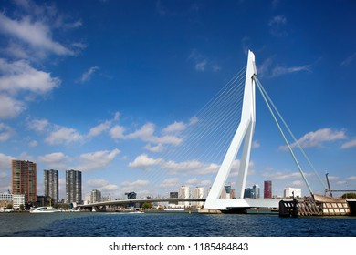 Rotterdam, Netherlands – September 18, 2018: Erasmus bridge seen from the south bank to the center of the city