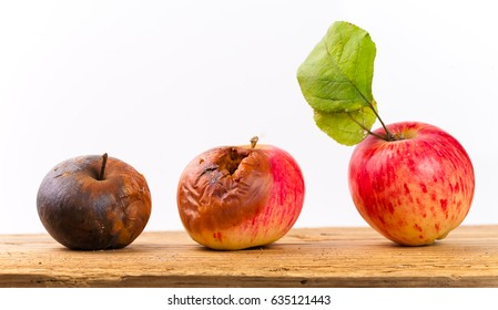 Rotting apple aging concept. fruit is spoiled