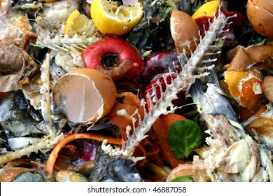 Rotting and discarded food and related materials.