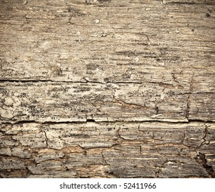 Rotting Wood Images Stock Photos Amp Vectors Shutterstock