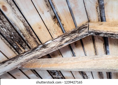 Rotting due to humidity and growth of molds  wooden roof structures
