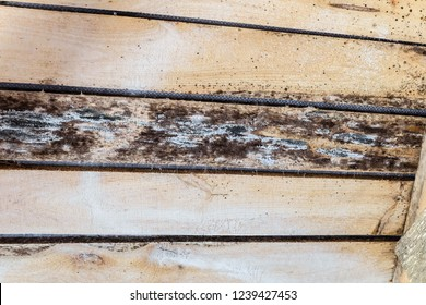 Rotting due to humidity and growth of molds  wooden roof structures. Wood roof construction damaged of black fungus.