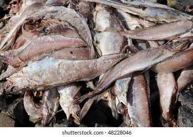 Rotting fish on dock