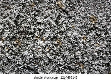 rough grey texture of the wall. small pimples
