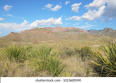 Rough mountains and desolate landscape in Big Bend National Park, Texas, United States of Amierca (USA).