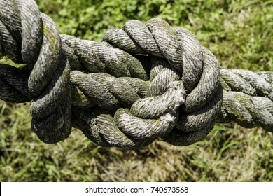 Rough old rope with big knot on a blurry green background.