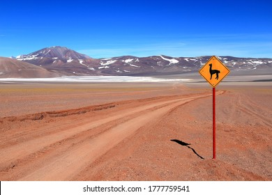 Rough road crossing the Puna region, a large desert in Northwest of Argentina. The sign ask to mind the vicuñas that live around.