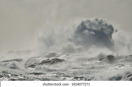 Rough sea on the coast and big wave when breaking against the rocks, Gran canaria
