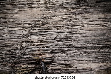 Rough weathered wooden board. Rustic texture for background. Toned.