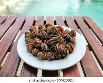 roughly cockles with the pool
