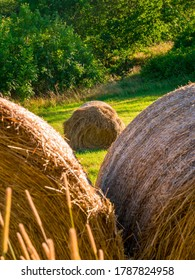 Round bale of straw in the meadow, framed by two bales in the foreground