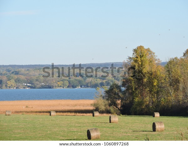 round bales sitting in field overlooking lake