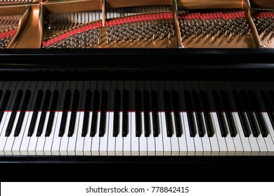 Round black grand piano