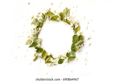 Round border frame with white jasmin flowers, buds and green branches on white background. Overhead view.