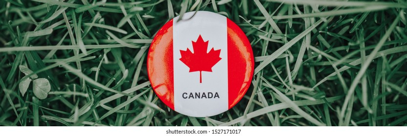 Round circle badge with red white Canadian flag maple leaf lying in grass on green forest nature background. Web banner header for website. Canada day holiday national celebration.