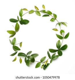 Round circle frame made of green branches and leaves on white background. Flat lay, top view