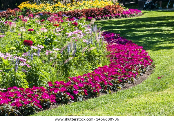 Round Flower Bed Variety Plants Stock Photo Edit Now 1456688936