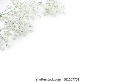 round frame wreath pattern with gypsophila flower, pink flower buds, branches and leaves isolated on white background. flat lay, top view
