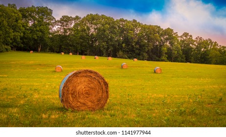 Round hay bale in a field by early morning light