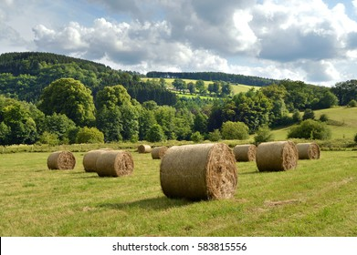 Round hay bales on a recently harvested field in a hilly landscape of the Belgian Ardennes.