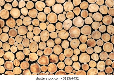 round teak wood stump background can use as wall paper