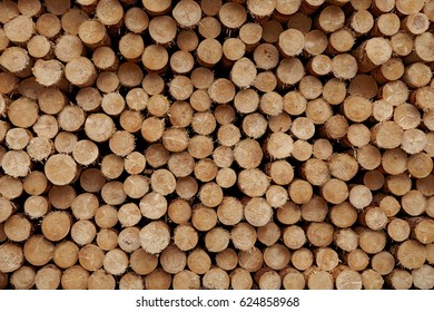 Round wood logs close-up texture background with different pine trees size diameters stored in large pile.
