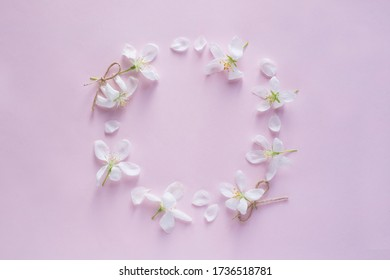 Round wreath frame copy space mock up.  Apple blossom flower buds background. Flat lay, top view floral spring concept.