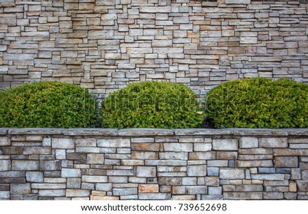 Rounded Green Shrubs Planter Box Against Stock Photo Edit Now