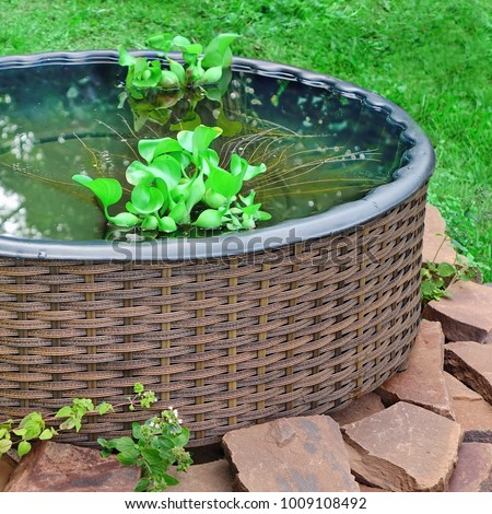 Rounded Rattan Garden Or Patio Fish Pond On The Backyard Lawn, Close Up