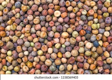 Roveja beans (Pisum sativum var. arvense), also known as robiglio or austrian winter pea, is a Mediterranean pea dried grown in Italy and the Netherlands.