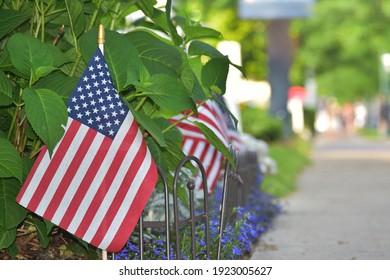 a row of American flags along a sidewalk