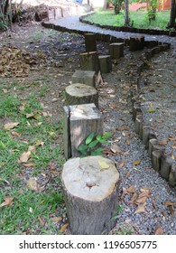 Row of benches made with tree trunks