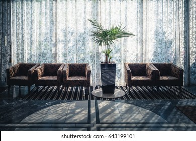 a row of benches or seats and a plant in a lobby / photography toward sunrise
