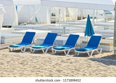 row of blue empty sunbeds on the beach in the sand