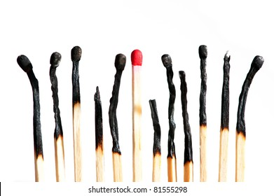 a row of burnt matches with one new, isolated on white background