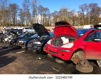 Row of cars in a scrapyard with bonnets up and parts missing like tyres, on a sunny day with trees and blue sky in the background.