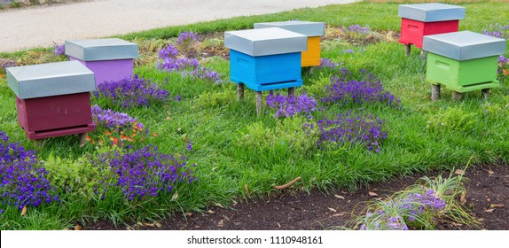 A row of colored bee hives in a field of flowers.