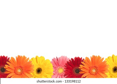 A row of colorful daisies are shown at the bottom of a white page.
