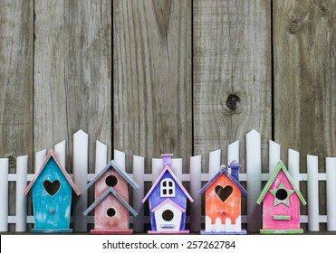 Row of colorful spring birdhouses by white picket fence and rustic wooden background; wood copy space