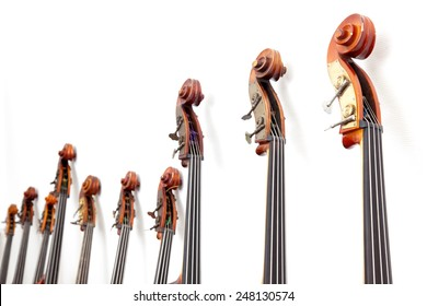 row of double basses details leaning against a wall