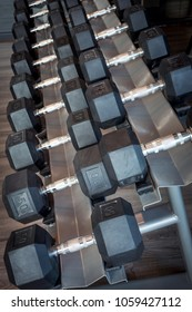 A row of dumbbells of various sizes for different exercises.