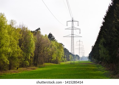 A row of electricity pylons which have been built through a forest.