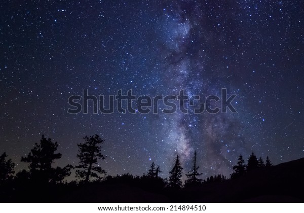 Row of evergreen trees in front of the Milky Way at Glacier Point in Yosemite National Park
