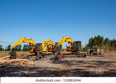 A row of forestry and logging machinery lined up after the workers have finished at the site for the day