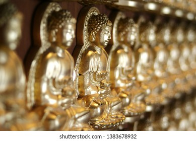 A row of golden Buddha statue on the wall to select the focus in the temple of Thailand. Closeup of warm light Buddha background.
