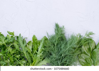 Row of green herbs and copy space. Garden parsley, arugula, dill and spinach. Fresh ingredients for healthy salad.