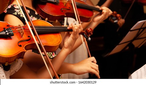 Row, group of anonymous violin players, children, people playing, bows in hands, stands in front, closeup. Classical music concert simple performance kids orchestra string section / quartet performing