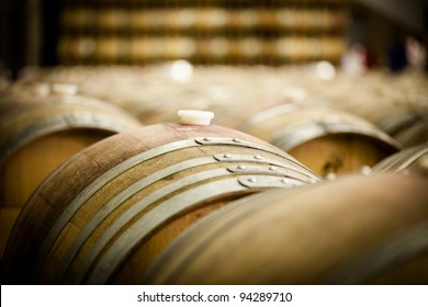 Row of Large Imported French Oak Wine Barrels at a Winery