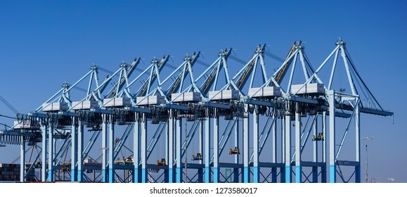 A row of large modern gantry cranes in a commercial shipping terminal loads and unloads oceangoing container ships