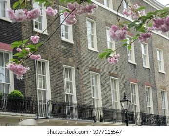 Row of luxury London town houses